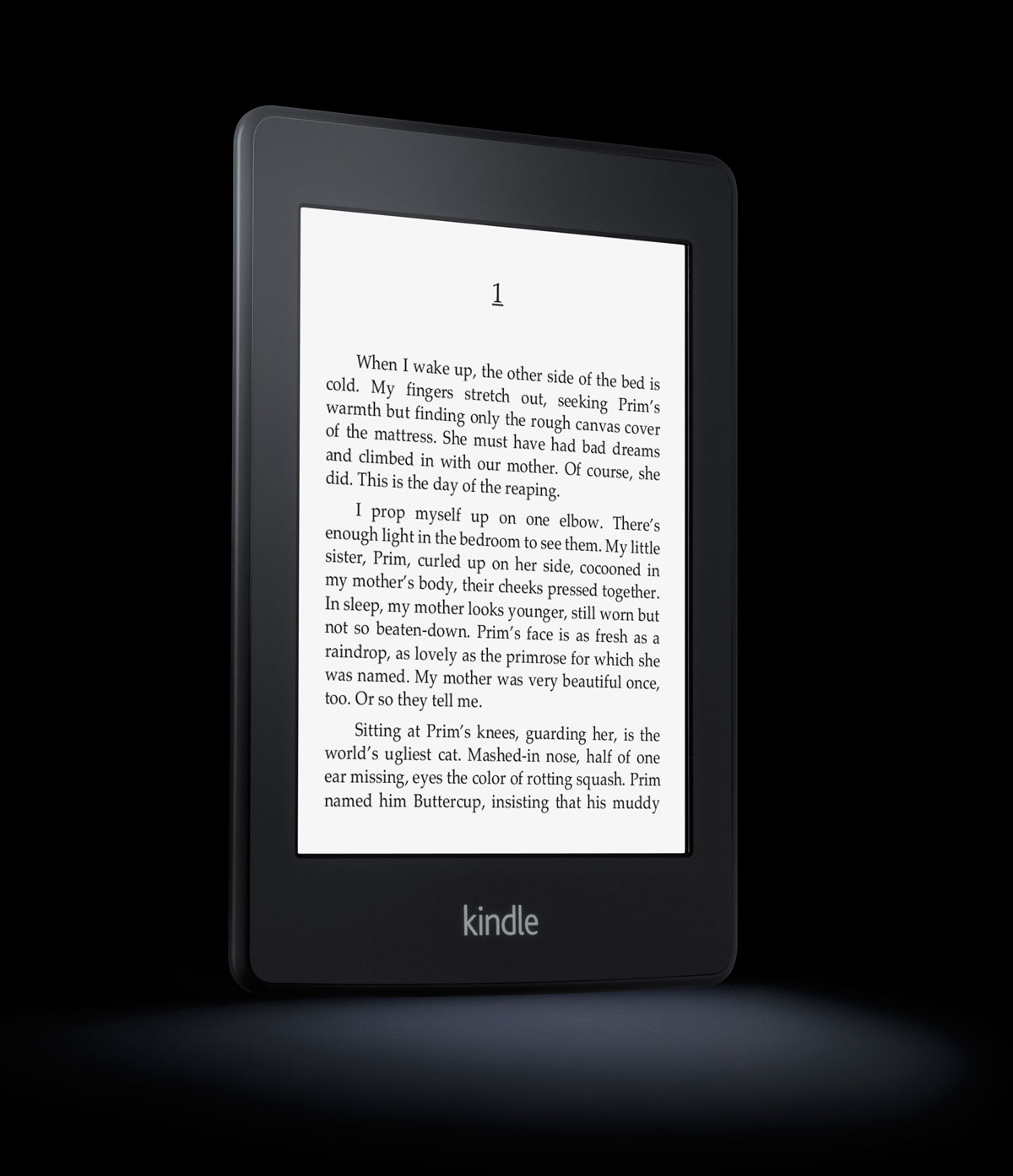 Amazon Kindle with Paperwhite Display